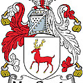 Maccarty Coat Of Arms Irish by Heraldry