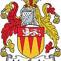 Maccashin Coat Of Arms Irish by Heraldry