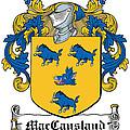 Maccausland Coat Of Arms Irish by Heraldry