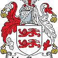 Macclancy Coat Of Arms Irish by Heraldry