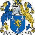 Maccoglan Coat Of Arms Irish by Heraldry