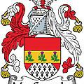 Macconaghy Coat Of Arms Irish by Heraldry