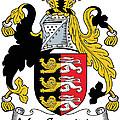 Macconsidine Coat Of Arms Irish by Heraldry