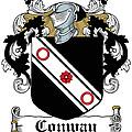 Macconway Coat Of Arms Irish by Heraldry