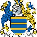 Maccoyle Coat Of Arms Irish by Heraldry