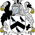 Maccullen Coat Of Arms Irish by Heraldry