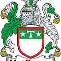 Macdrury Coat Of Arms Irish by Heraldry