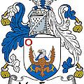 Macenery Coat Of Arms Irish by Heraldry