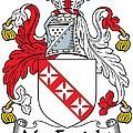 Macenright Coat Of Arms Irish by Heraldry