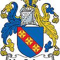 Macfadyen Coat Of Arms II Irish by Heraldry