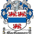 Macgannon Coat Of Arms Irish by Heraldry