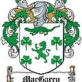 Macgarry Coat Of Arms Irish by Heraldry
