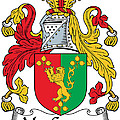 Macgaynor Coat Of Arms Irish by Heraldry