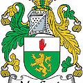Macgenis Coat Of Arms Irish by Heraldry