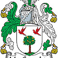 Macgeraghty Coat Of Arms Irish by Heraldry