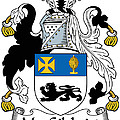 Macgilchrist Coat Of Arms Irish by Heraldry
