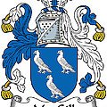 Macgill Coat Of Arms Ulster Ireland by Heraldry