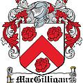 Macgilligan Coat Of Arms Irish by Heraldry