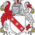 Macgilmore Coat Of Arms Irish by Heraldry