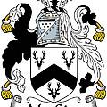 Macgirr Coat Of Arms Irish by Heraldry
