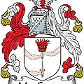 Macgowan Coat Of Arms Irish by Heraldry