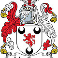 Macgrane Coat Of Arms Irish by Heraldry