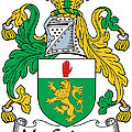 Macguinness Coat Of Arms Irish by Heraldry