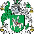 Macguire Coat Of Arms Irish by Heraldry