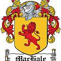 Machale Coat Of Arms Irish by Heraldry