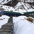 Machhapuchchhre Base Camp, Nepal  by Aidan Moran