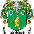 Machugh Coat Of Arms Irish by Heraldry