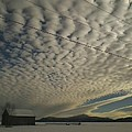 Mackerel Sky by Loretta Ransom