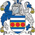 Maclea Coat Of Arms Irish by Heraldry