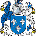 Maclilly Coat Of Arms Irish by Heraldry