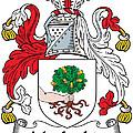 Macloskie Coat Of Arms Irish by Heraldry