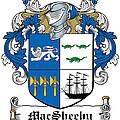 Macsheehy Coat Of Arms Irish by Heraldry