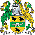 Macsweeney Coat Of Arms Irish by Heraldry