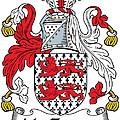 Mactiernan Coat Of Arms Irish by Heraldry