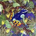 Madagascar Mantella by Lynda K Boardman