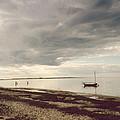 Madaket Harbor by Natasha Marco