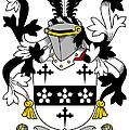 Maddox Coat Of Arms Irish by Heraldry