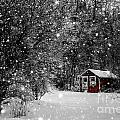 Made In Maine Winter  by Brenda Giasson
