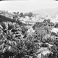 Madeira Public Garden Old Fort 1903 by A Gurmankin