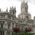 Madrid City Hall by Deborah Smolinske