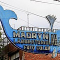 Madryn Lab Whale Sign by Tap On Photo