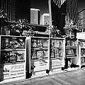 magazine stands free coupons guides and escort directories Las Vegas Nevada USA by Joe Fox