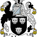 Magee Coat Of Arms Irish by Heraldry