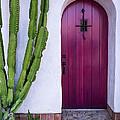 Magenta Door by Thomas Hall