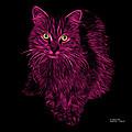 Magenta Feral Cat - 9905 F by James Ahn