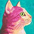 Magenta Kitty by Theresa MacLean